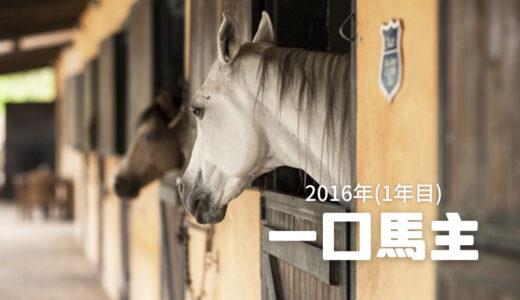 夫婦共通の趣味 一口馬主生活~2016年の出資馬とその収支~